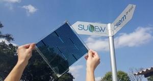 sunew