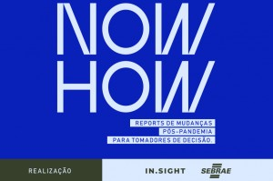In.Sight_Sebrae_now how_